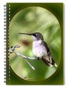 Hummingbird - Gold And Green Spiral Notebook