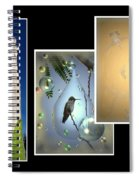 Hummingbird Collage 2009 Spiral Notebook
