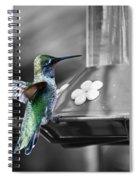 Hummingbird Wings II Spiral Notebook