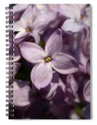 Hungarian Lilac Nr 9 Spiral Notebook