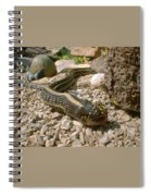 Hunter And Hunted Spiral Notebook