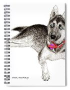 Husky With Blue Eyes And Red Collar Spiral Notebook