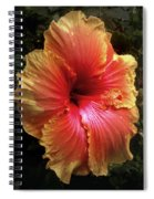 Hybiscus Multi Colored Spiral Notebook