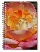 Hybrid Tea Rose Spiral Notebook