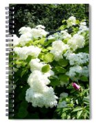 Hydrangeas And A Rose Spiral Notebook