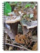 Hygrophorus Caprinus Mushrooms Spiral Notebook