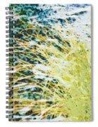 Hypoglycaemic Spiral Notebook