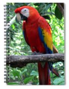 I Am Ready For My Closeup II Spiral Notebook