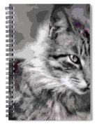 I Am Serious Spiral Notebook