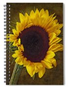 I Dance With The Sun Spiral Notebook