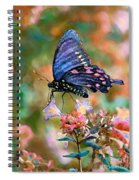 I Dream Of Rainbow Colors Spiral Notebook