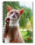 I Want Food Cat Spiral Notebook