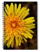 I Want To Be A Flower... Spiral Notebook