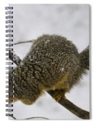 I Wonder How Deep The Snow Is Spiral Notebook