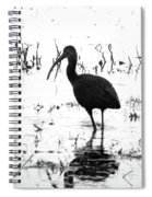 Ibis Pintail Drive Cameron Prairie Nwr Spiral Notebook