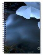 Ice 12 Spiral Notebook