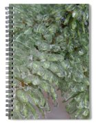 Ice-coated Norway Spruce Spiral Notebook
