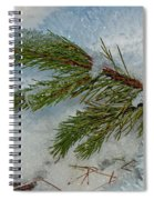 Ice Crystals And Pine Needles Spiral Notebook