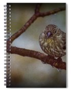 Ice Droplet Bird Spiral Notebook