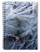 Ice Is Nice Spiral Notebook