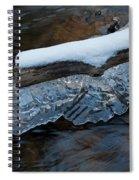 Ice Scallops Spiral Notebook