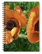 Iceland Poppies Spiral Notebook