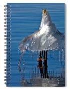 Icy Blue Twist Spiral Notebook