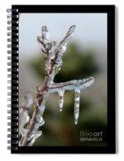 Icy Branch-7529 Spiral Notebook