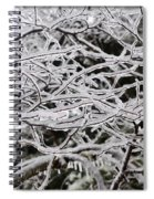 Icy Dreams Spiral Notebook
