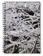 Icy Dreams Spiral Notebook