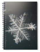 Icy Spiral Notebook
