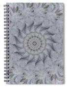 Icy Mandala 1 Spiral Notebook