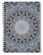 Icy Mandala 4 Spiral Notebook