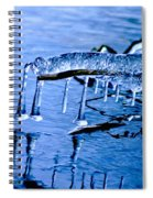 Icy Reflections Spiral Notebook