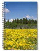 Idyllic Summer Day Spiral Notebook