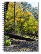 If A Tree Falls Spiral Notebook