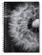 If Only Wishes Came True Spiral Notebook