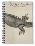 Iguana, 1585 Spiral Notebook