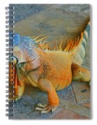 Iguana At The Restaurant  Spiral Notebook