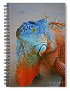 Iguana Close-up Spiral Notebook