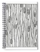 Illustration Of Muscle Types Spiral Notebook