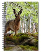 I'm All Ears Spiral Notebook