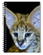 Im All Ears Spiral Notebook