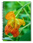 Impatiens Capensis - Orange Spotted Jewelweed Spiral Notebook