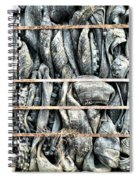 Impenetrable  Spiral Notebook