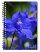 In A Blue Mood Spiral Notebook