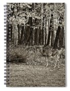 In A Yellow Wood Sepia Spiral Notebook