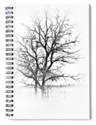 In Black And White Spiral Notebook