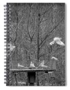 In Coming Taking Off Spiral Notebook