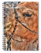 In Deep Thought Spiral Notebook